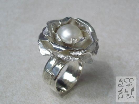 rosaplata-perla1